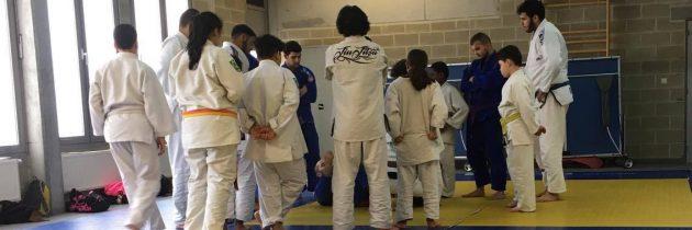 Molenbeek, base arrière du jiu-jitsu brésilien